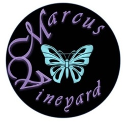 Marcus Vineyard Logo